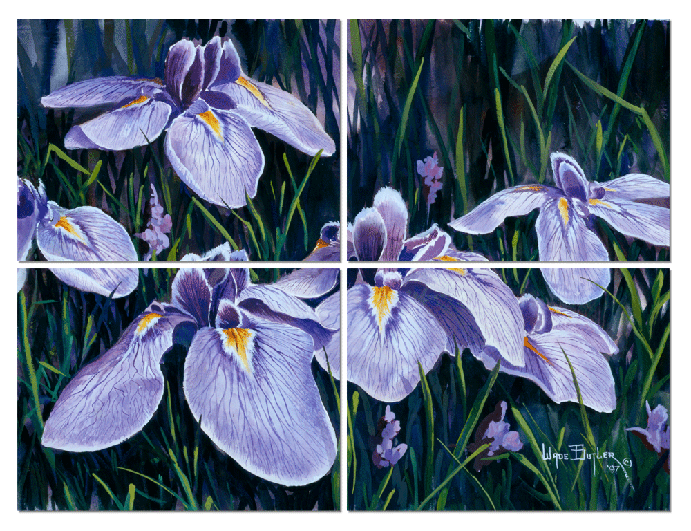 Purple-Iris-Mock-up-fptxjl
