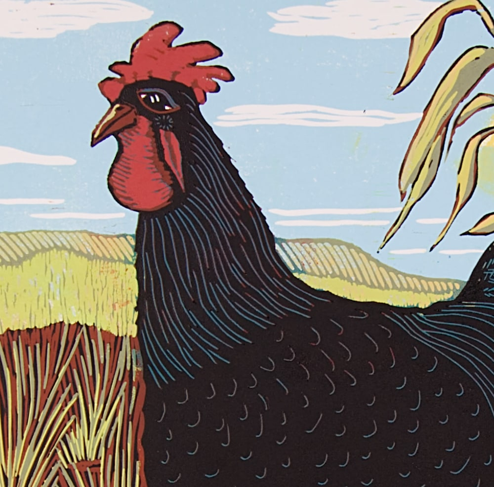Rooster-XL-detail-hoh0m1