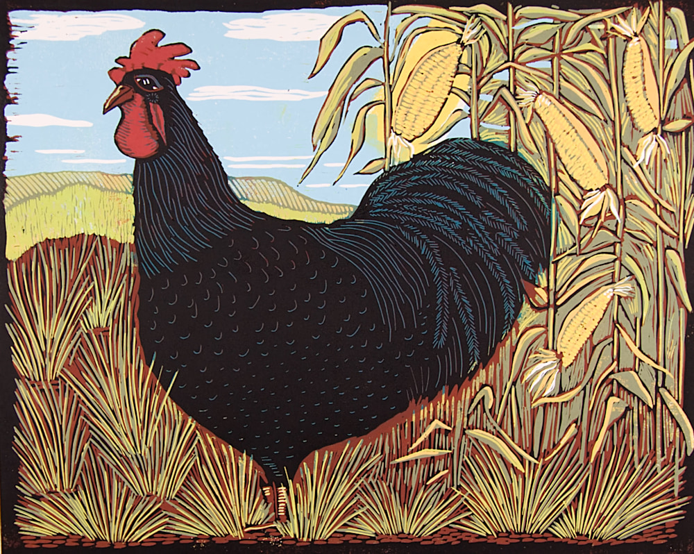 Rooster-XL-image-eh32cn