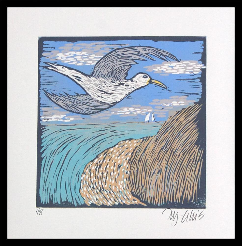 Seagull 1 framed