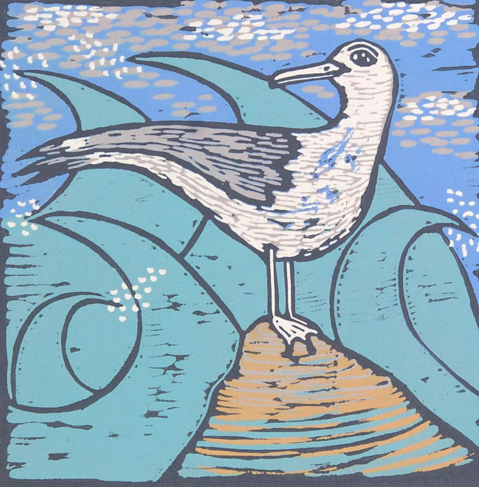Seagull 3 image