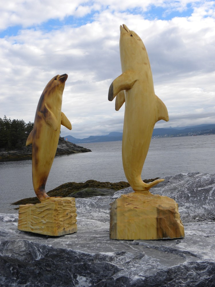 Bottle Nosed Dolphins, Yellow Cedar