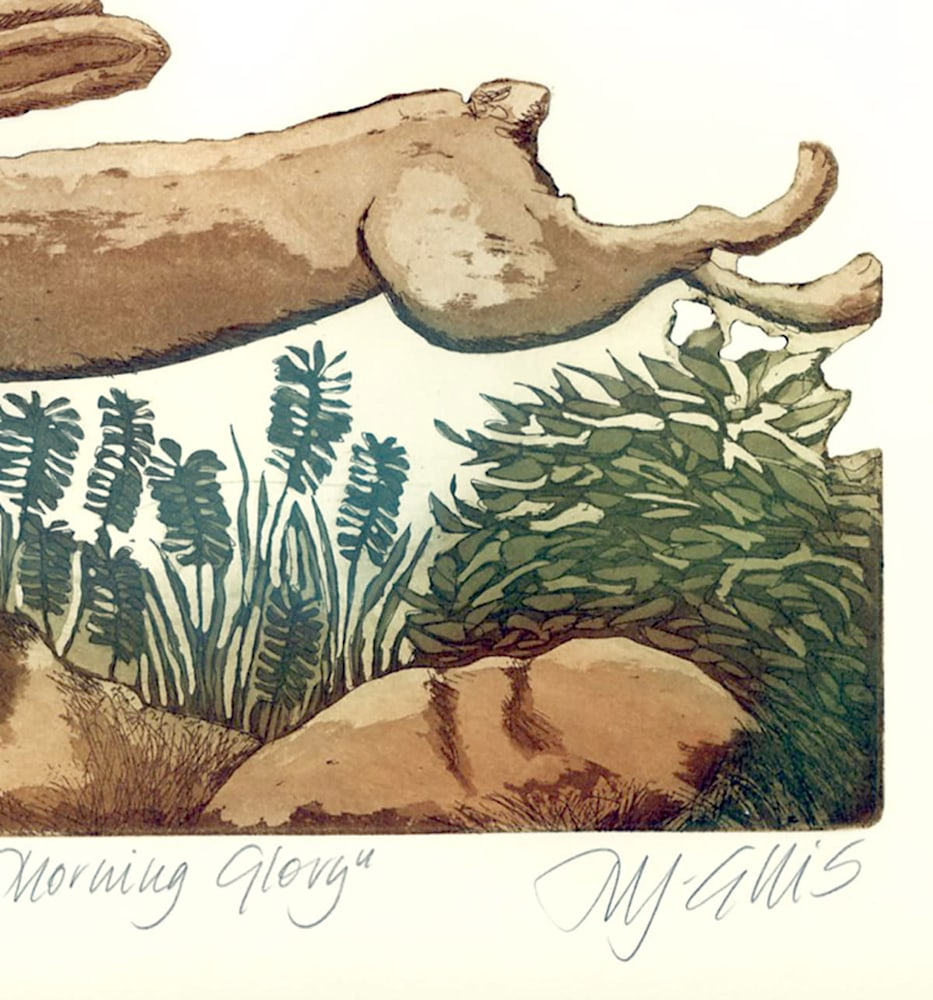 hare morning glory detail 2