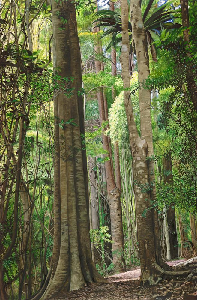 KRIG 006 Rainforest