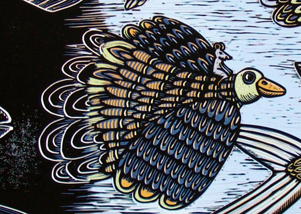 Feather and fin 110f11 detail 2