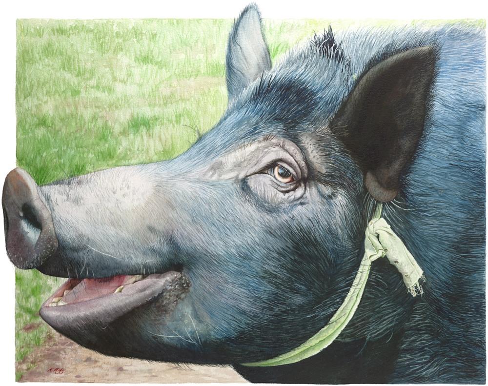 KRIG 019 Pig greenribbon