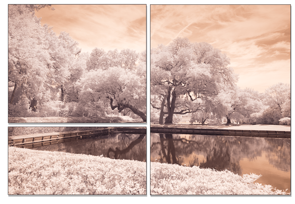 IR COLOR TREE
