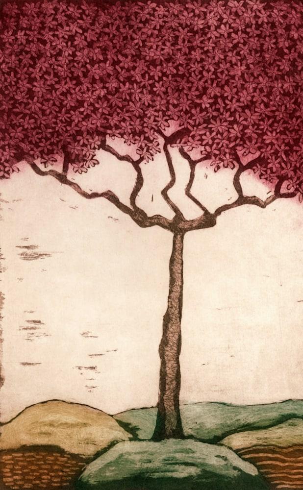 pink blossom image