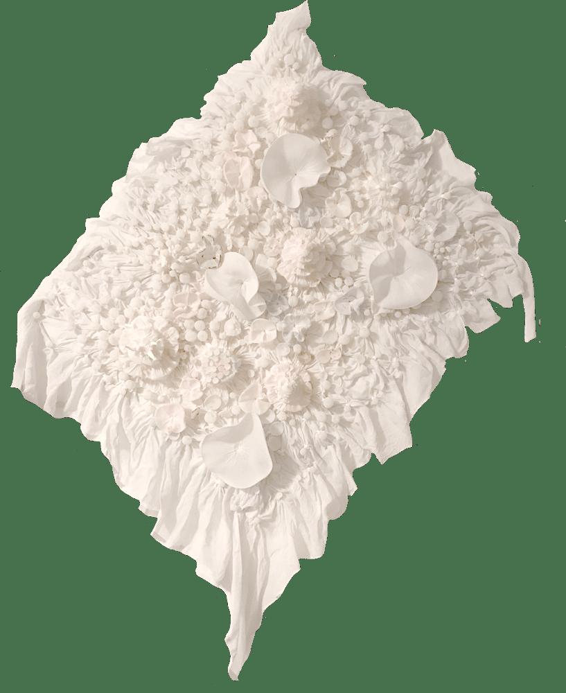 new white reef
