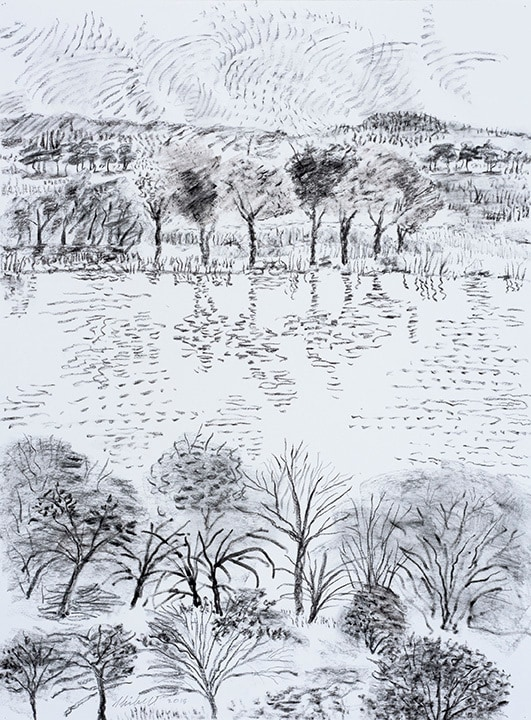 From Across The Lake graphite charcoal drawing