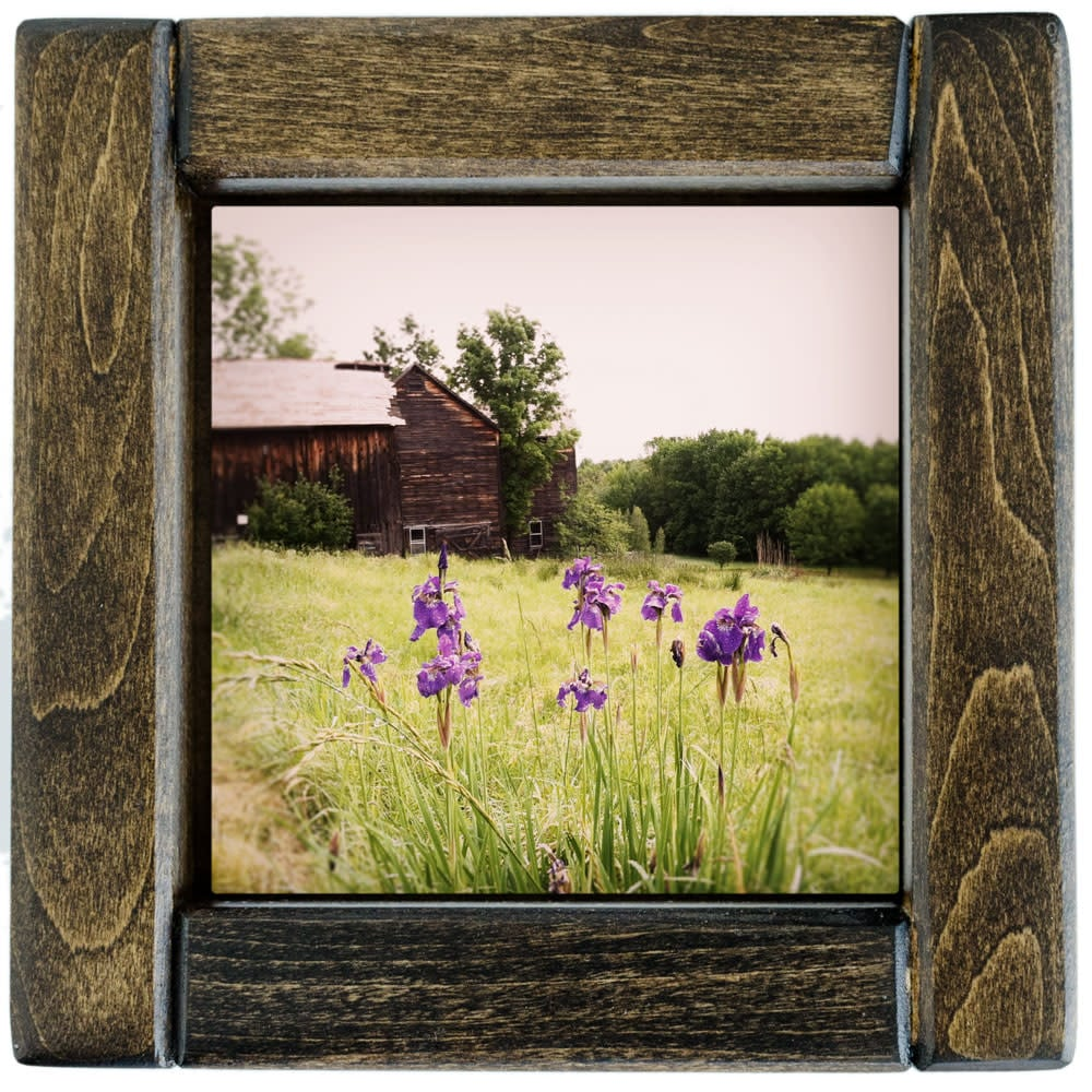 Barns with Purple Irises Framed