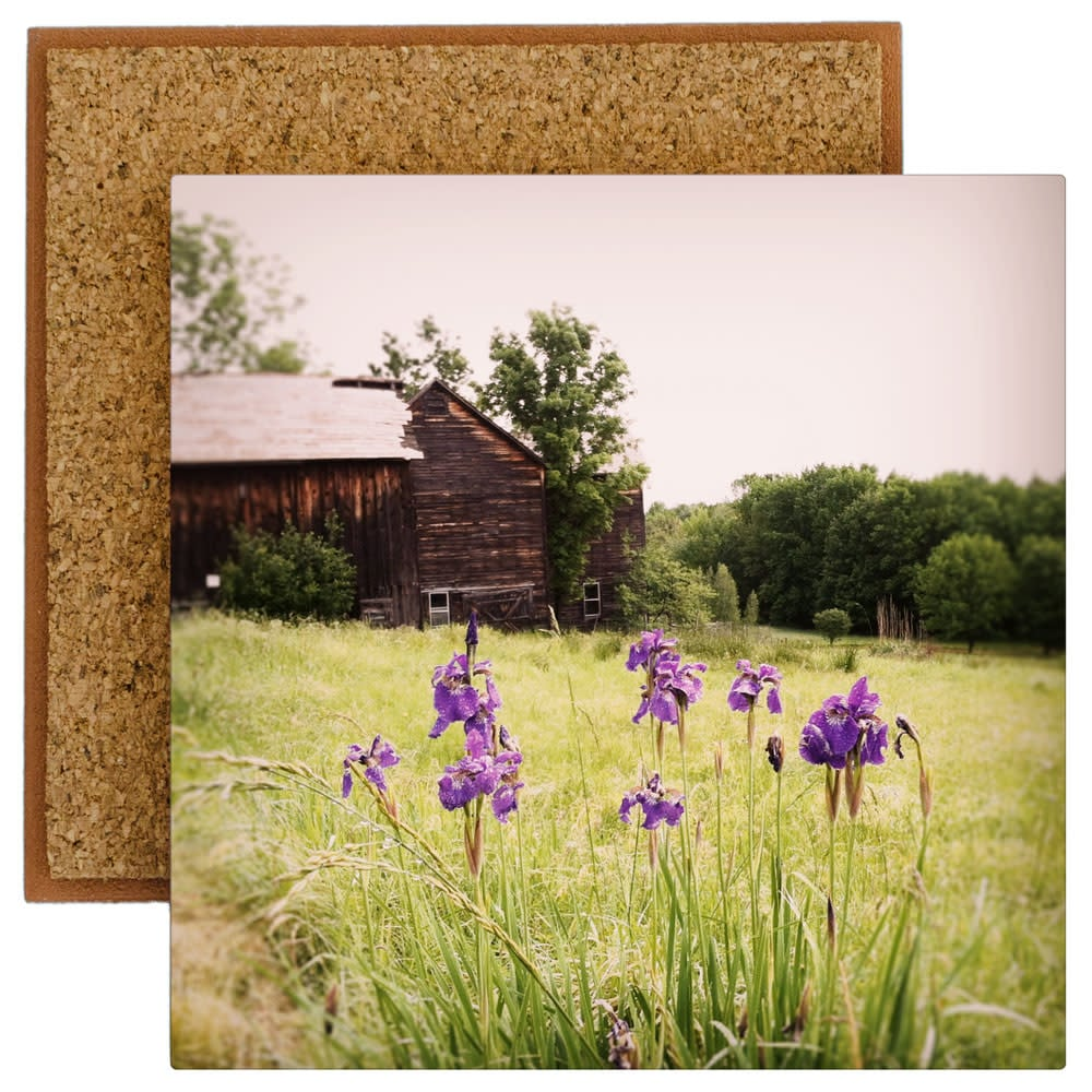 Barns with Purple Irises