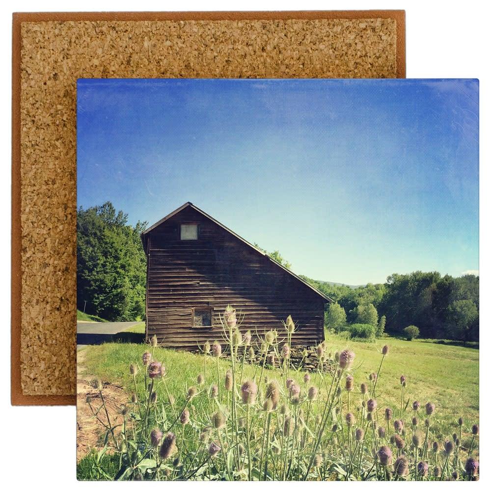 Saltbox Barn with Teasel