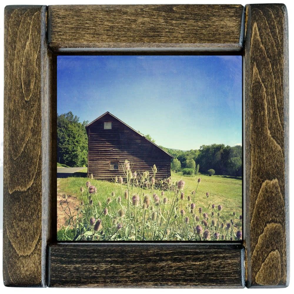 Saltbox Barn with Teasel Framed