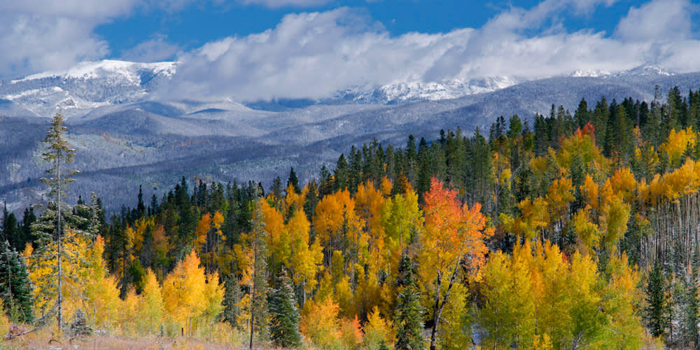 Fall in Mountains
