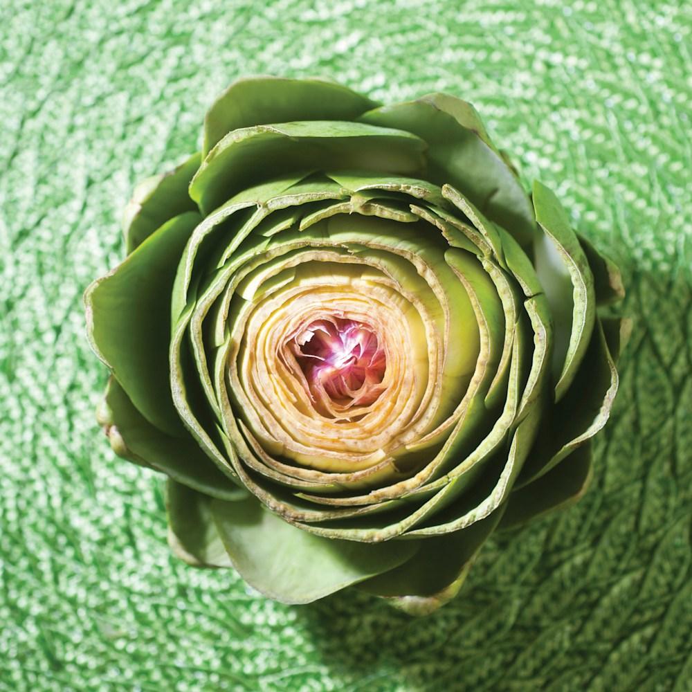 artichoke1