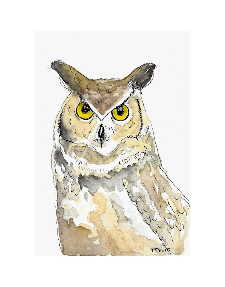 Owl Print on 11x14