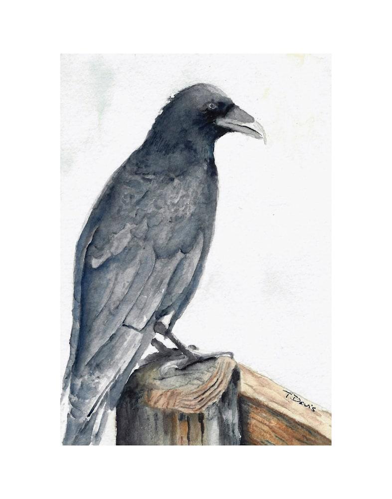 Raven Print on 11x14