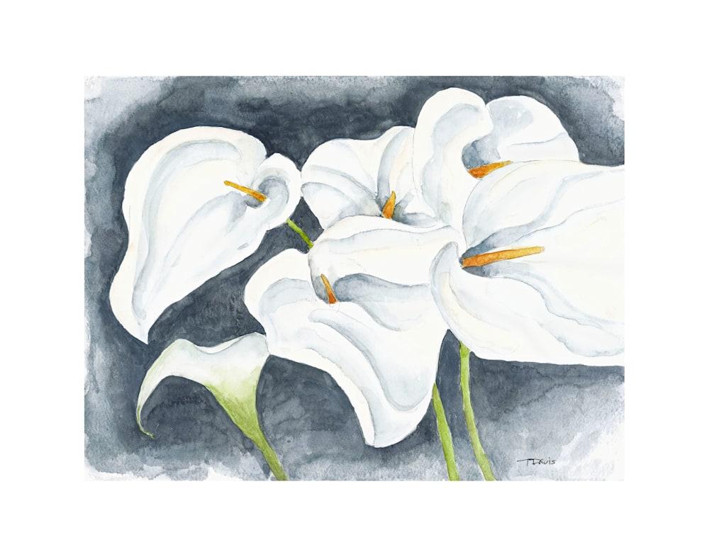 Calla Lilies Print on 11x14