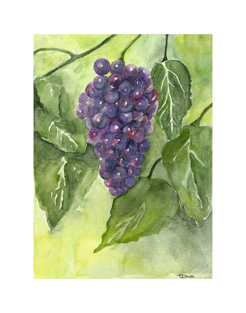 Purple Grapes on 11x14
