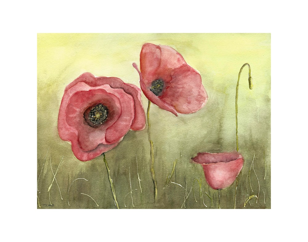 Red Poppies Print on 11x14