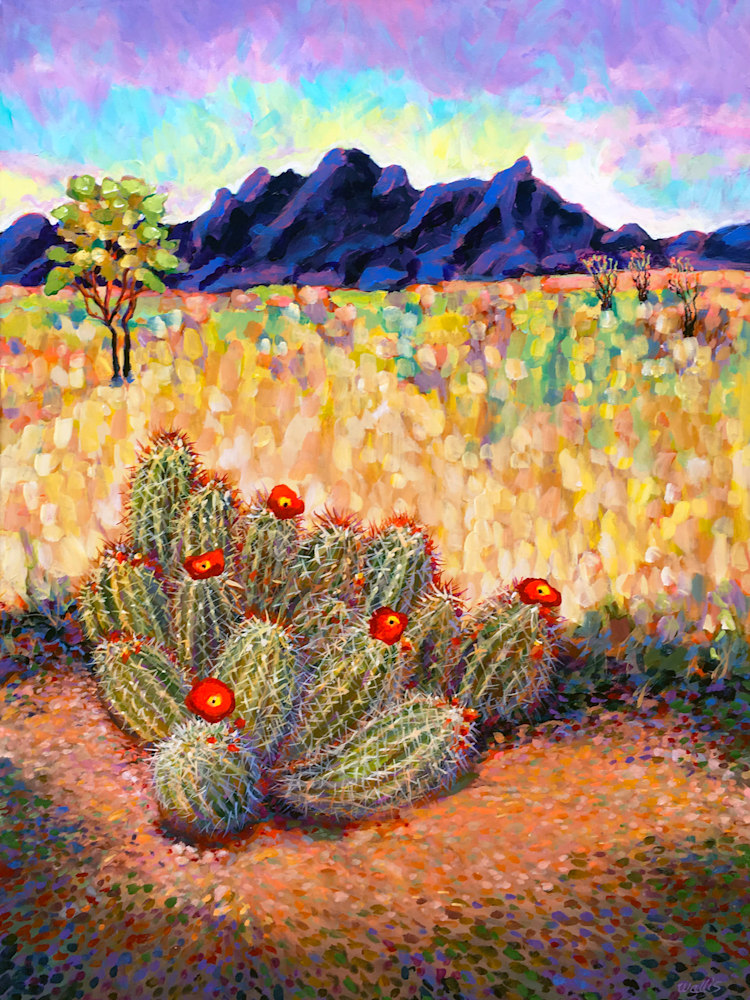 New Mexico Pasture With Opuntia Cactus 72