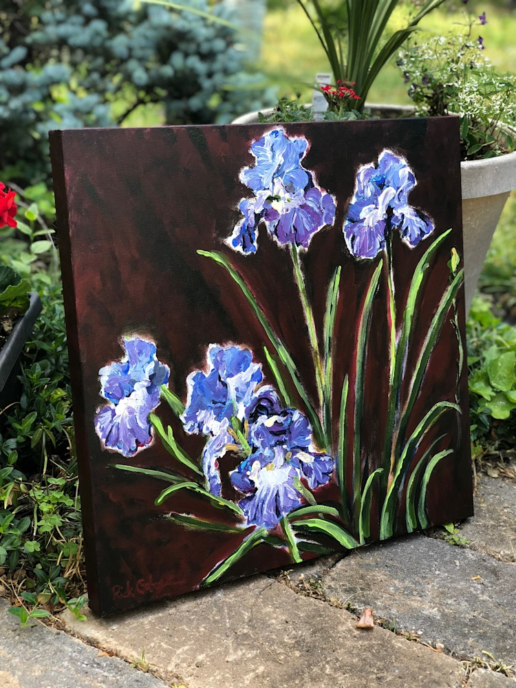 purple irises rick osborn