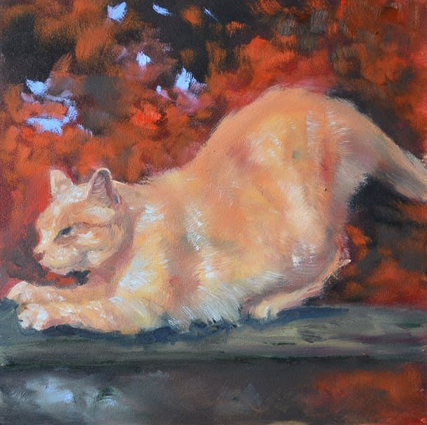 Orange Cat in Red Trees  Small File Stephanie Weaver 0092
