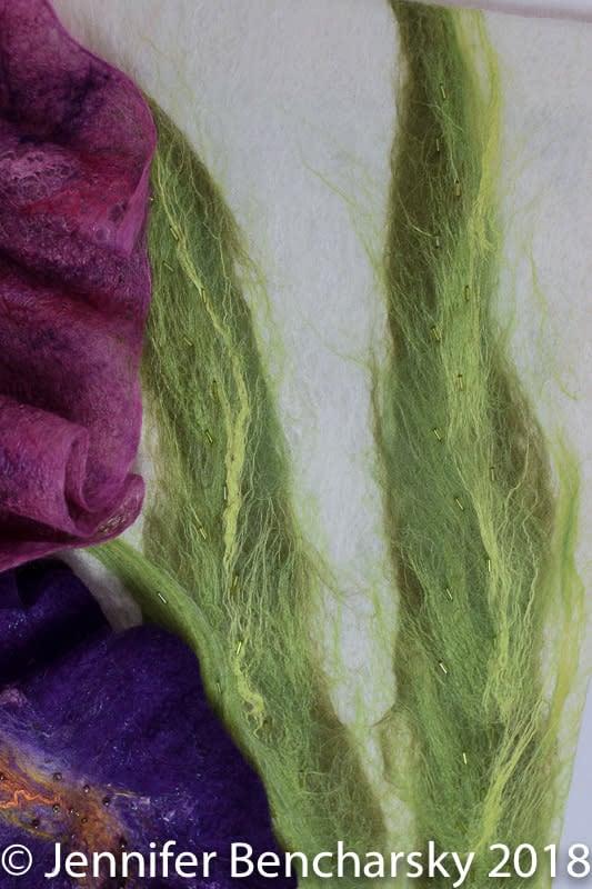 Bearded Iris 10