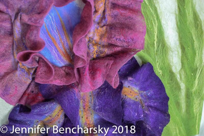 Bearded Iris 4