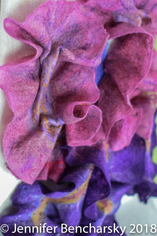 Bearded Iris 5