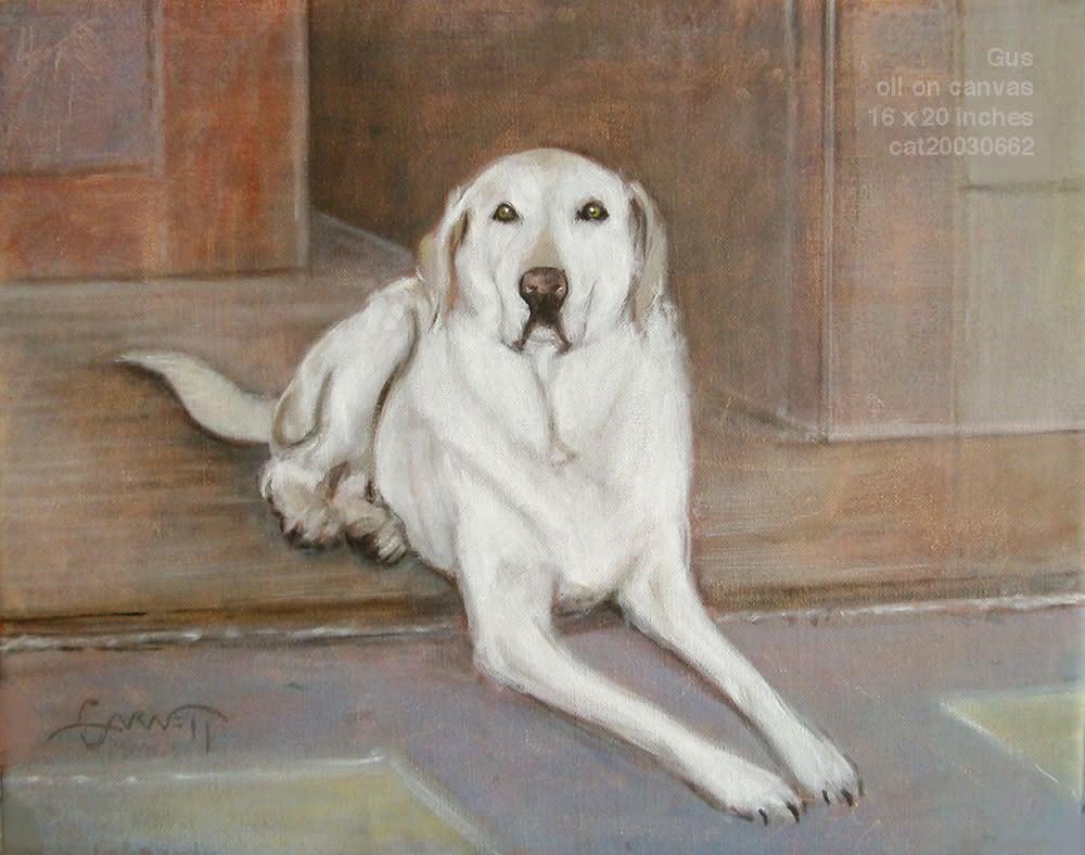 20030662T DogGusArdino1k