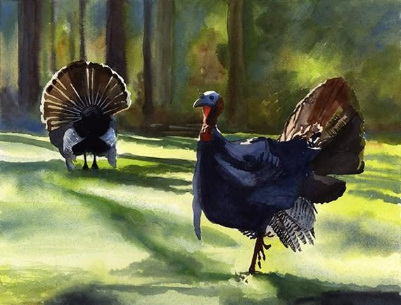 Two Turkeys ASF NS