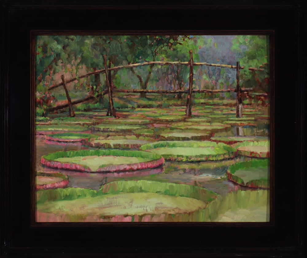 Monkey Bridge Framed