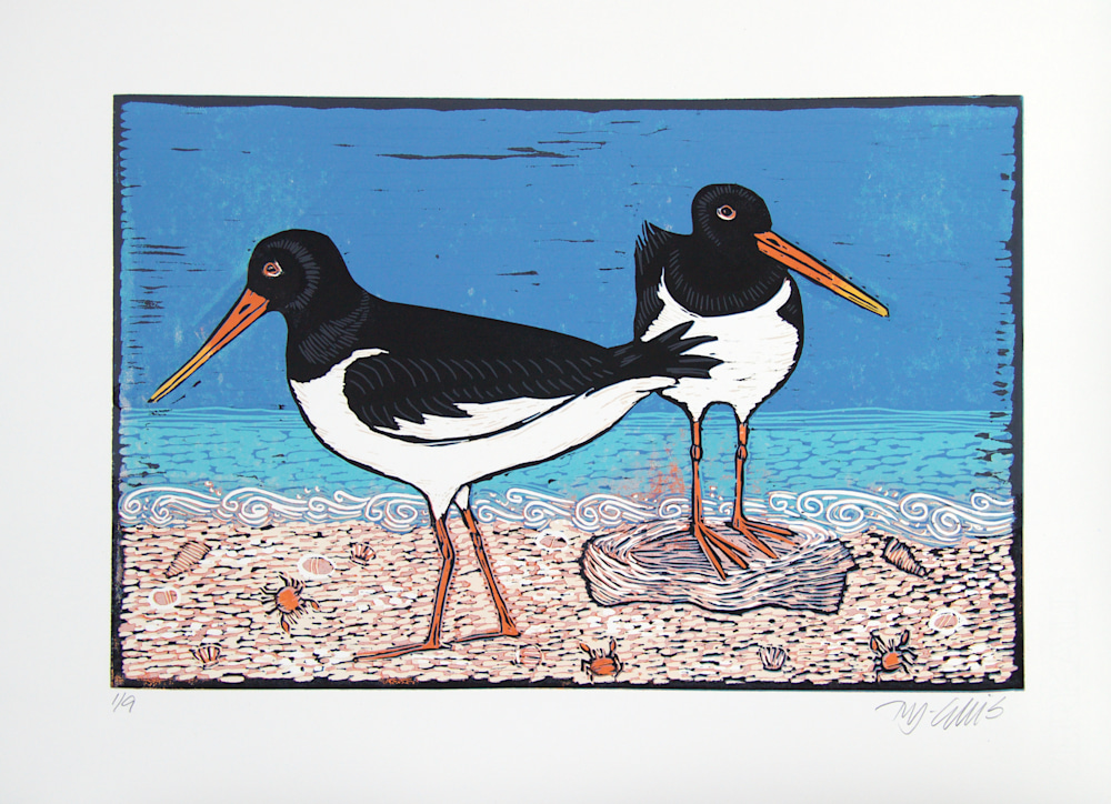2 oystercatchers