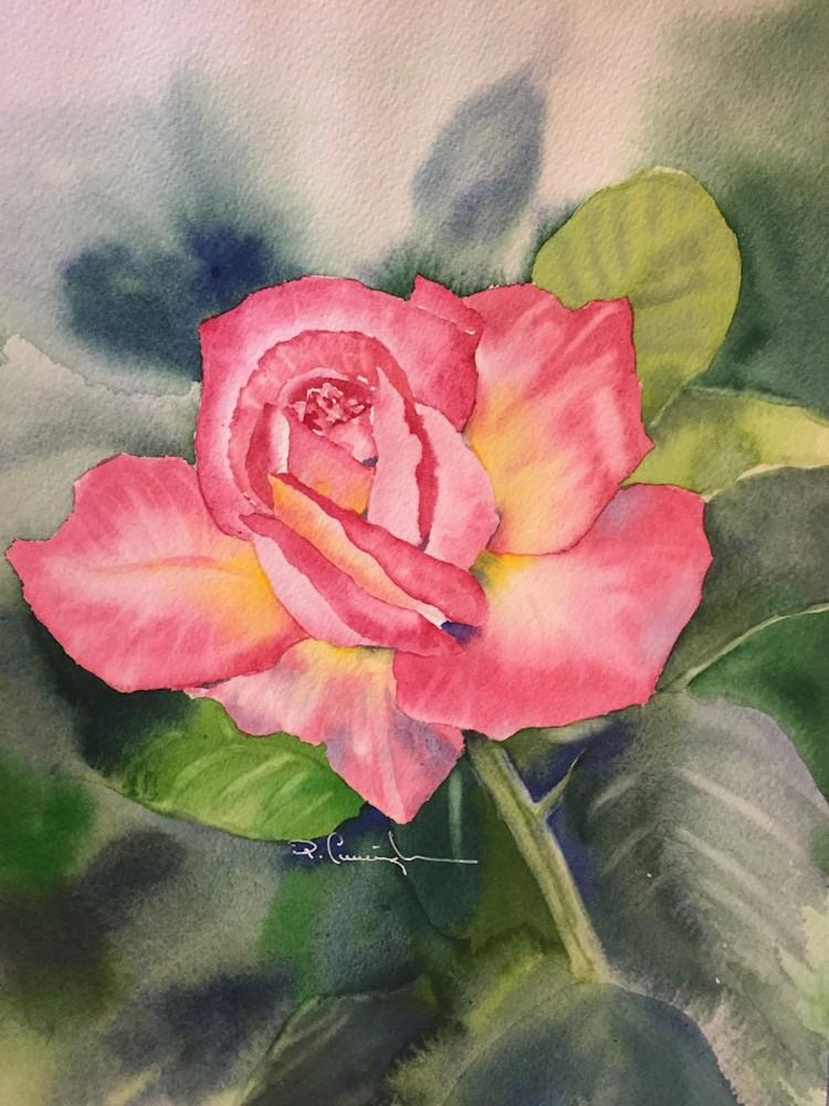 furman rose