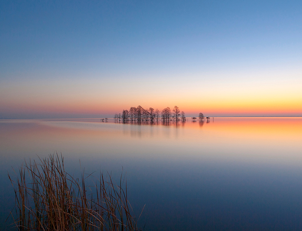 June Lake Mattamuskeet Sunrise