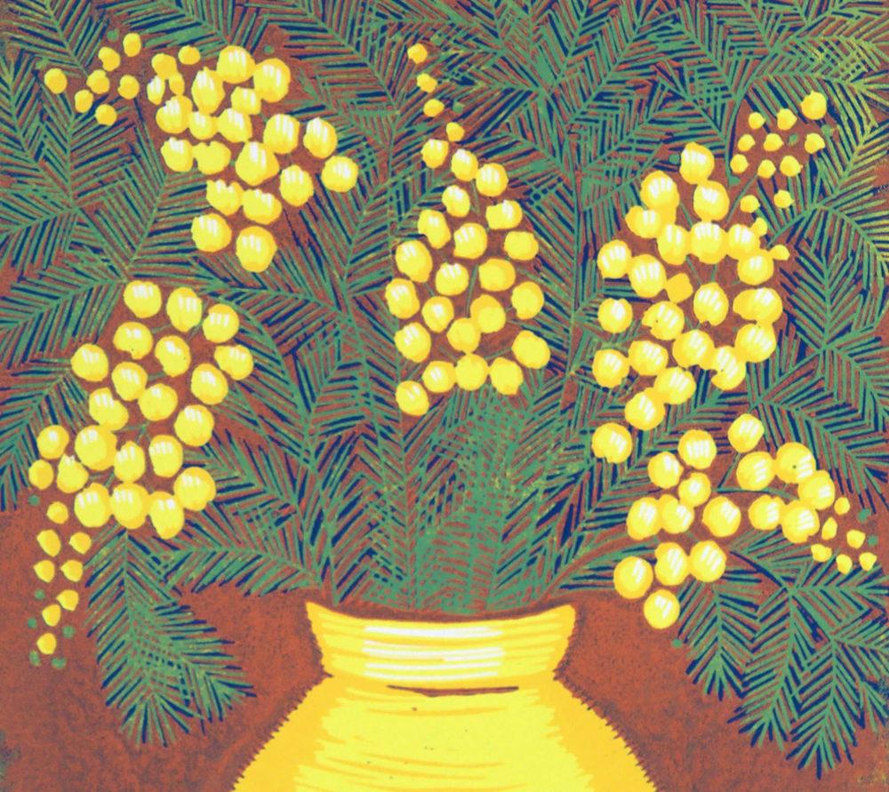 Mimosa 2 top