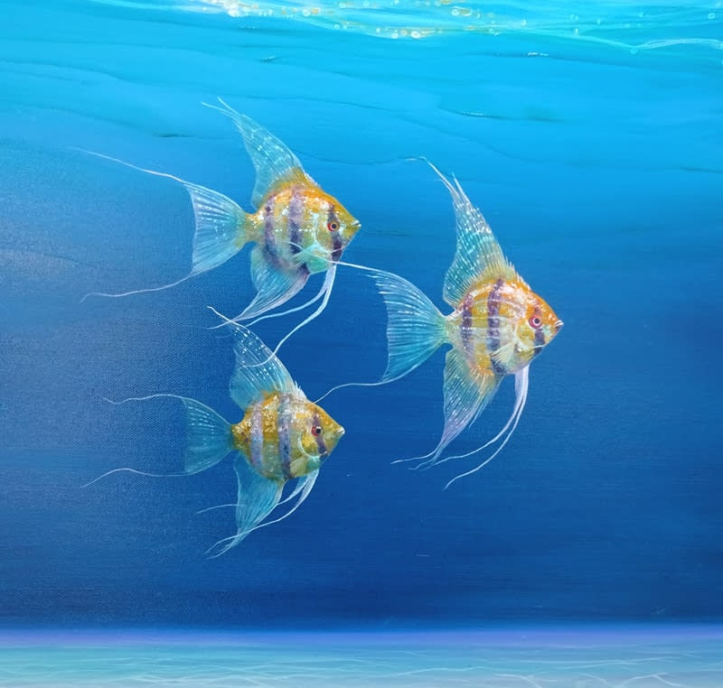 Magic under the sea by gill bustamante d2 S