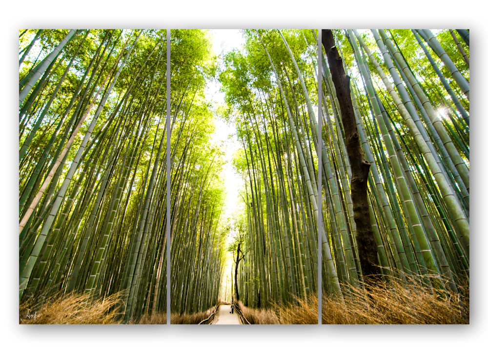 triptych template2