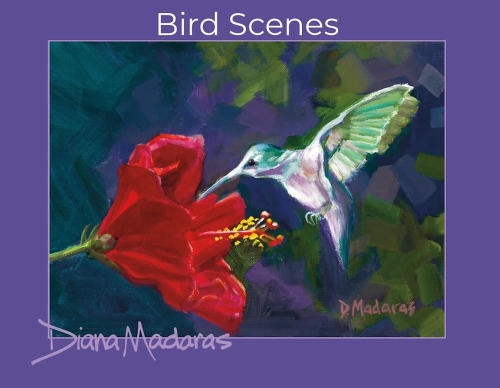 Bird Scenes