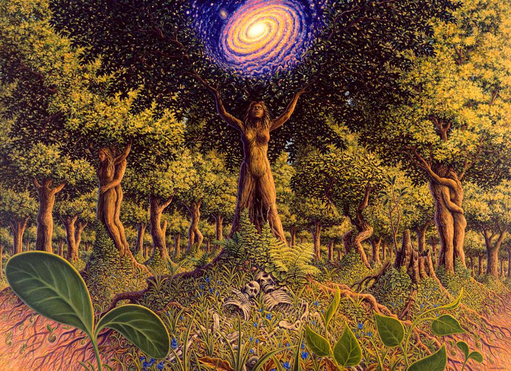 TREE 8 x 11