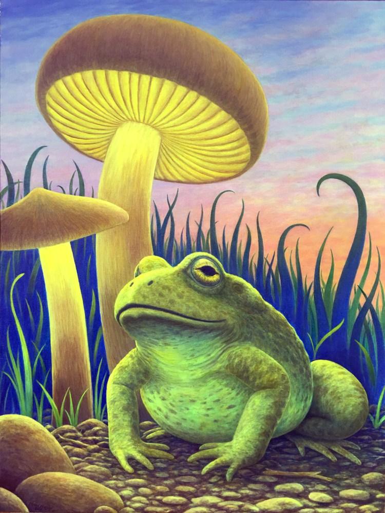 magic toad 9 x 12