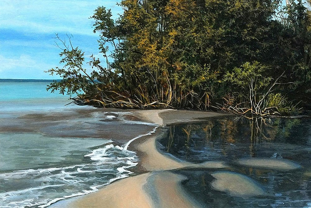 Kevin Grass Island Shore detail Acrylic on panel painting