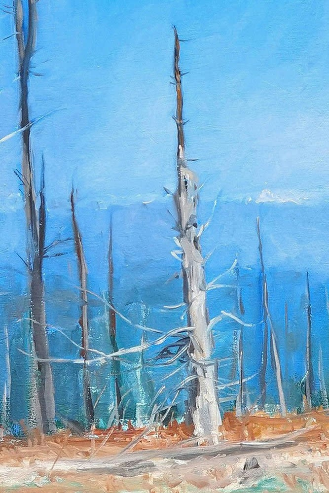 Kevin Grass Atop Mount Mitchell detail Oil on canvas painting
