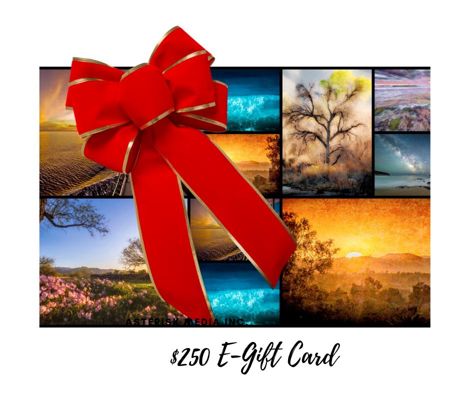 $250 E GIFT CARD 2
