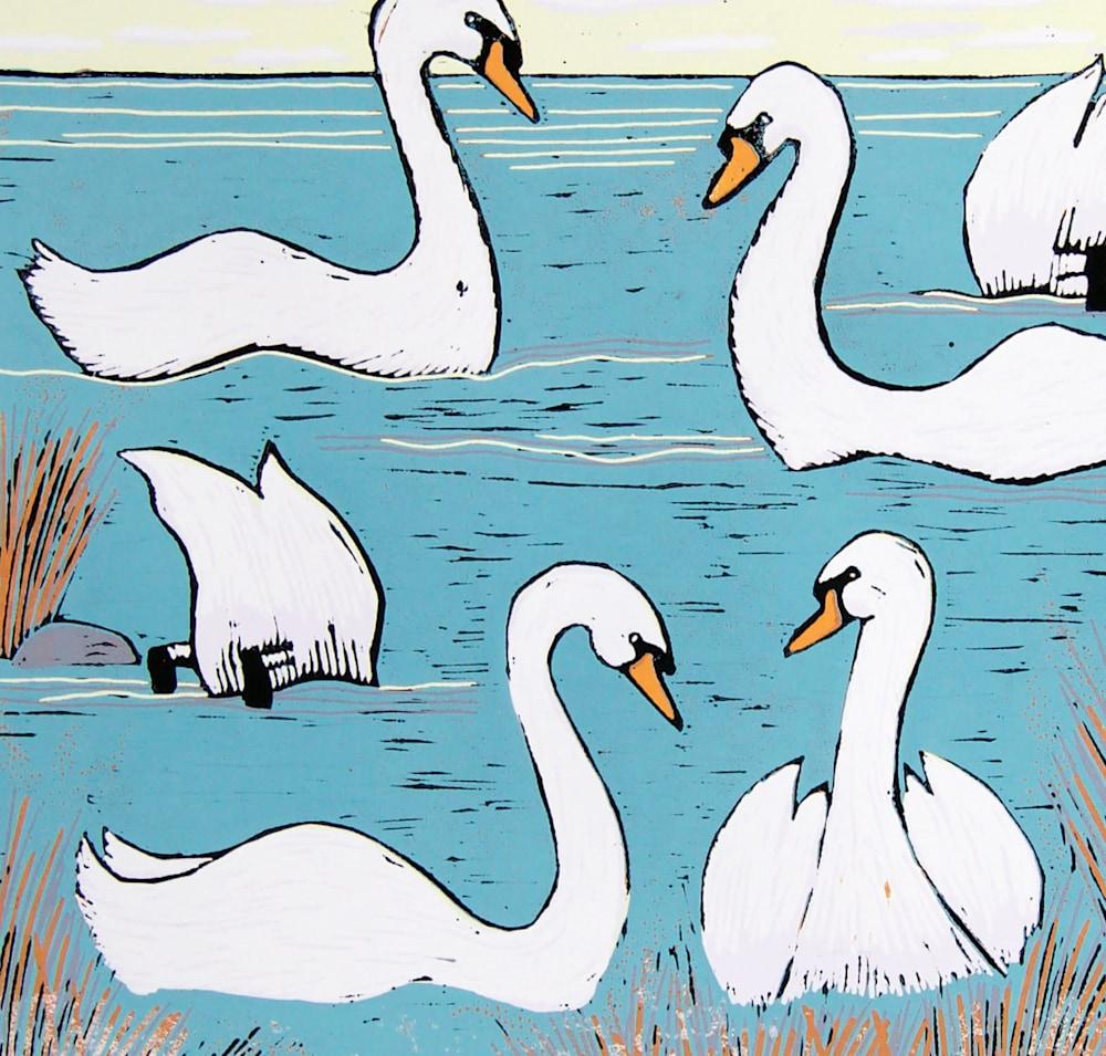 Swans Morning details