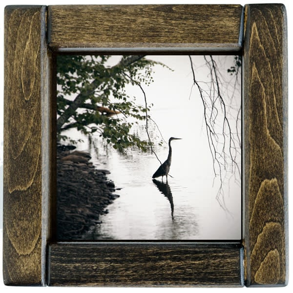 Standing Heron Photo Tile Framed