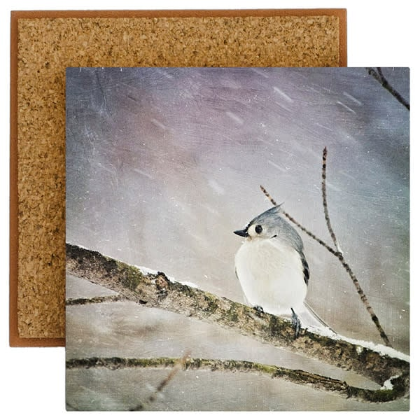 Tufted Titmouse Photo Tile