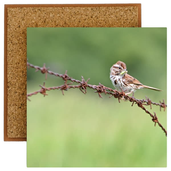 Sparrow Photo Tile